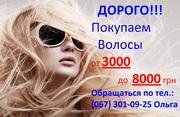 Куплю украинские волосы!Дорого!