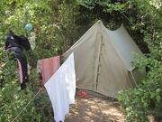 Куплю брезентовую палатку домик