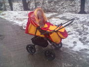 детская коляска бу