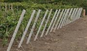 Бетонные столбы для винограда малины Запорожья.